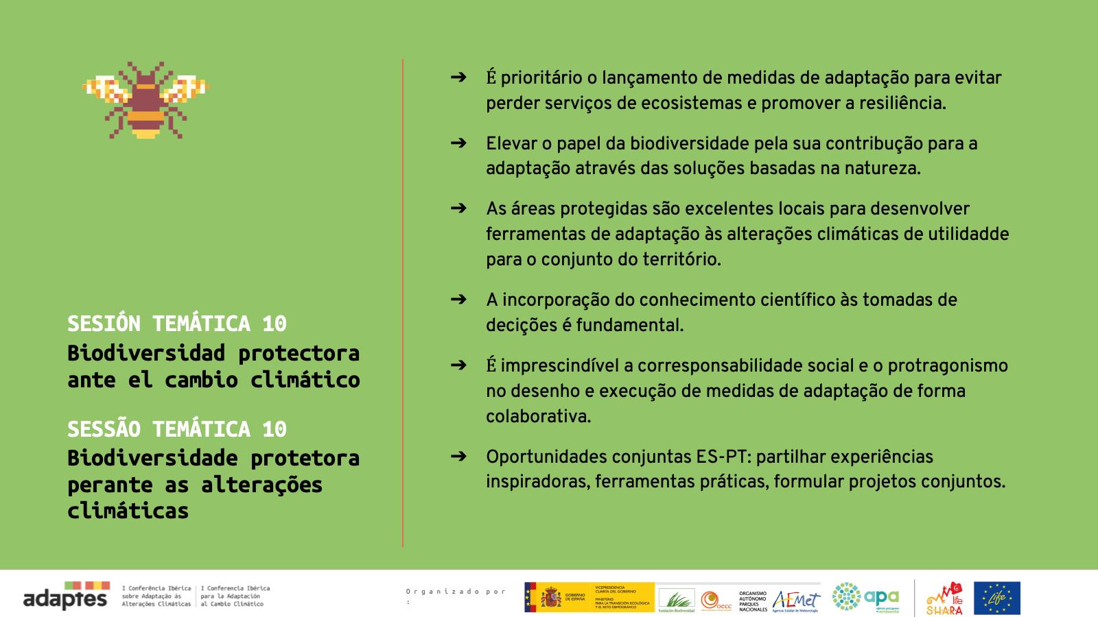 Diapositiva10